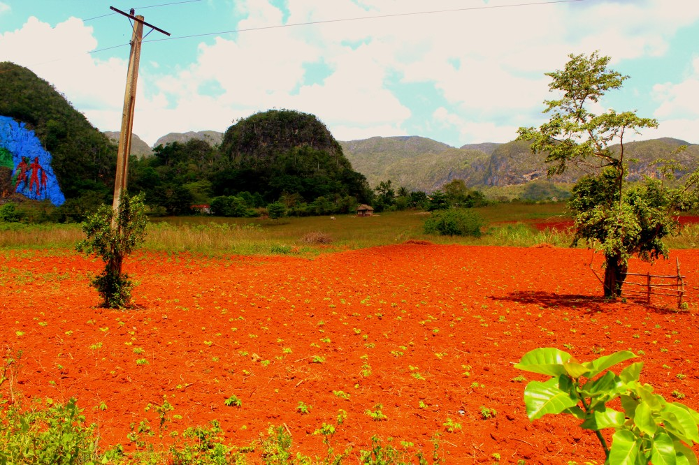Landschaft Vinales 2