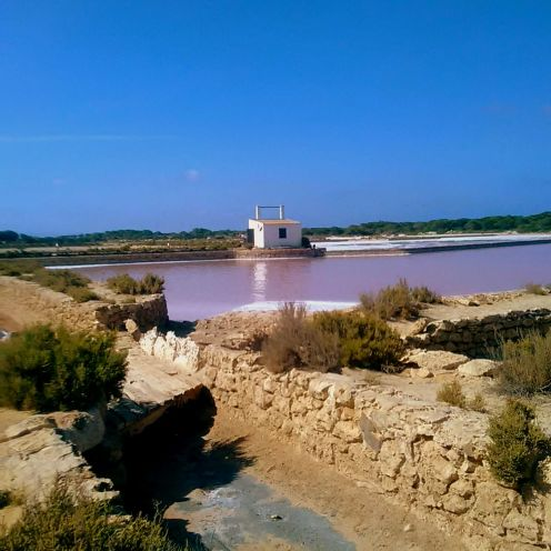 Salinen Formentera Salzgewinnung Es Moli Salzsee UNESCO Seegraswiese