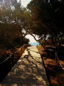 Formentera Strandzugang