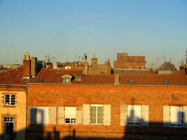 Toulouse Rue Dalbade Blick über Dächer