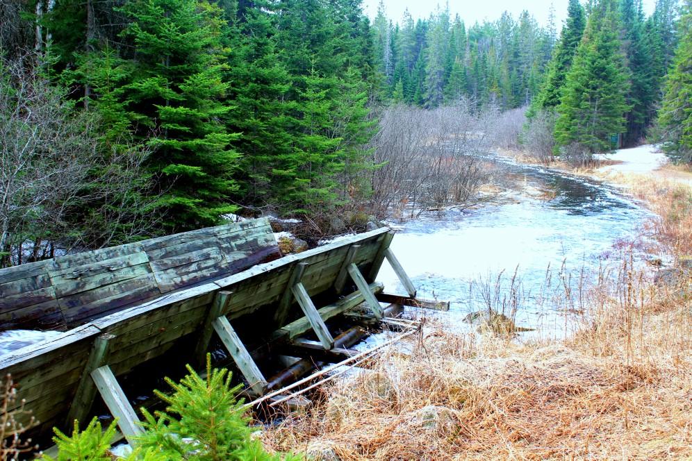 Holzstämme wurden hier transportiert auf dem Oxtongue River Algonquin Park, Ontario Canada