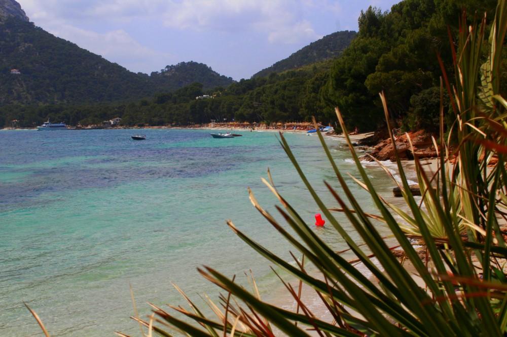 Bucht Badia de Pollenca Mallorca Norden Cap Formentor Wald Balearen Spanien Reiseblog exploreglobal