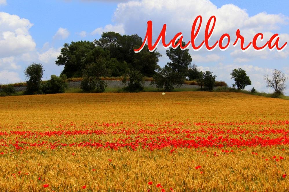 Mallorca Titelbild