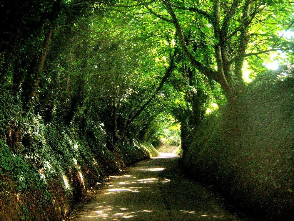 Jersey  Wanderung Straße Verte Rue Five Oaks St Marys Mont Orgueil Castle