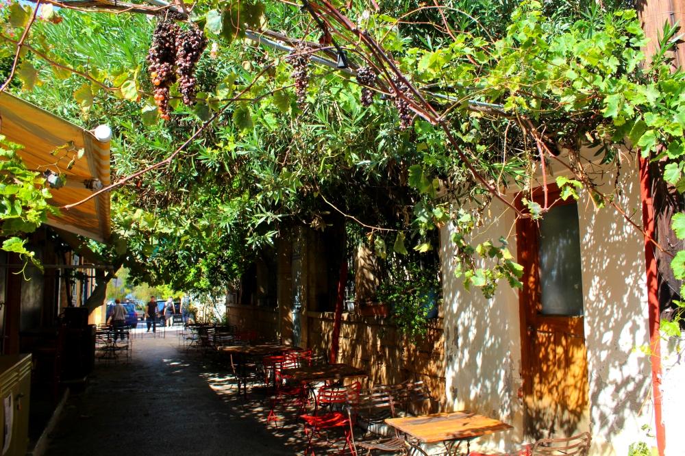 Gasse mit Weinreben in Ägina Stadt in Griechenland