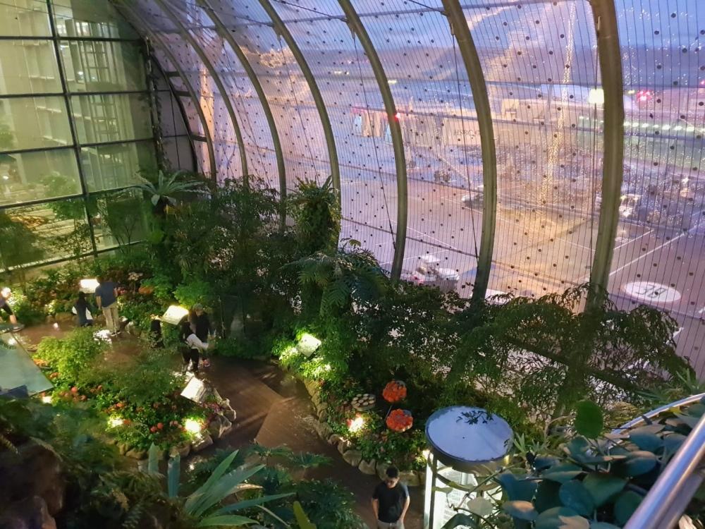 Singapur Changi Airport Halle botanischer Garten Blumen Reiseblog Exploreglobal